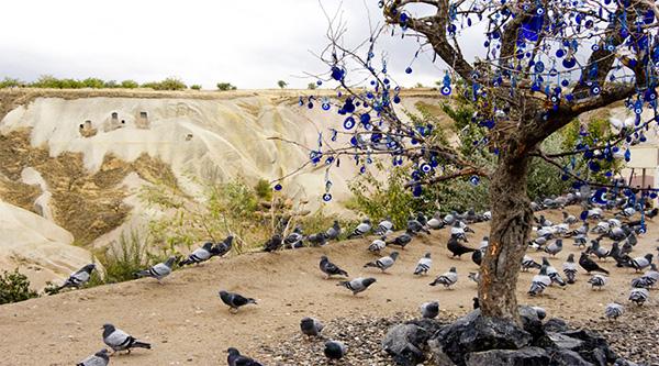 دره کبوتر Pigeon Valley