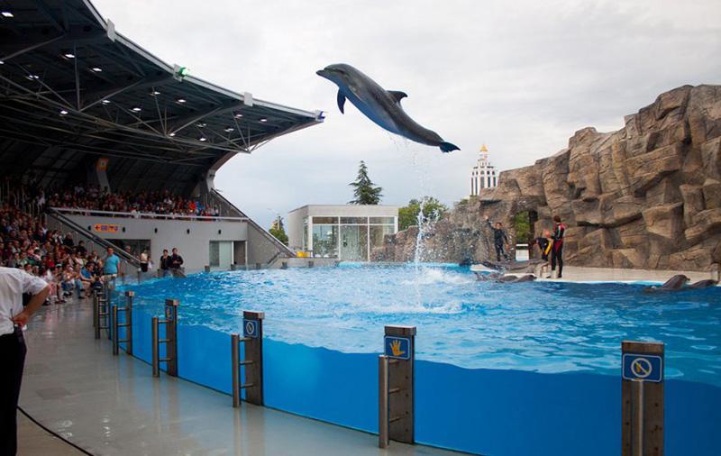 دلفیناریوم باتومی (Dolphinarium)