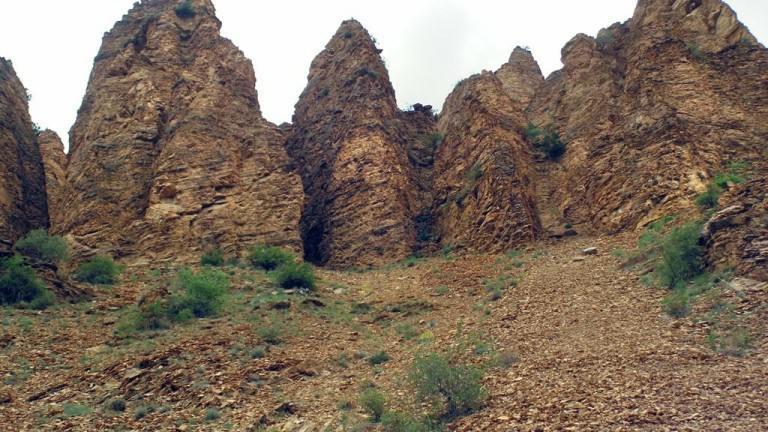 منطقه حفاظت شده Shikahogh